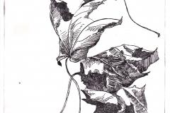 bladeren2