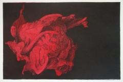 bloemkool rood