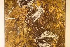 dode meeuw 4